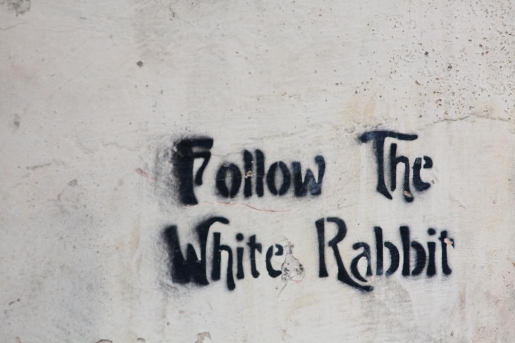 """""""Follow"""